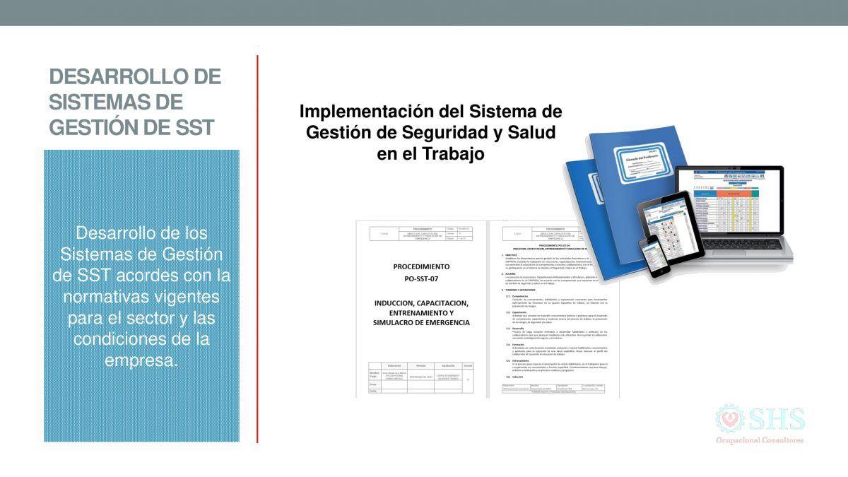 Desarrollo de Sistemas de Gestión de SST